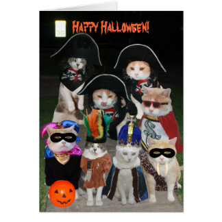 Funny Cats Prowling on Halloween Greeting Card