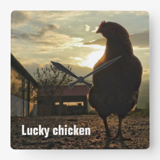 Funny Chicken in backlight 01.2 Square Wall Clock
