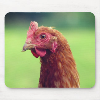Funny Chicken Portrait Mouse Mat