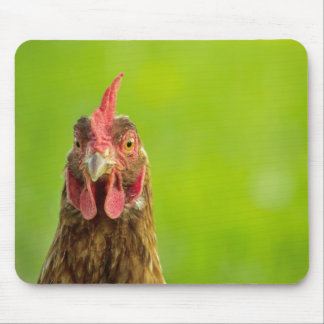 Funny Chicken Portrait - Mousepad