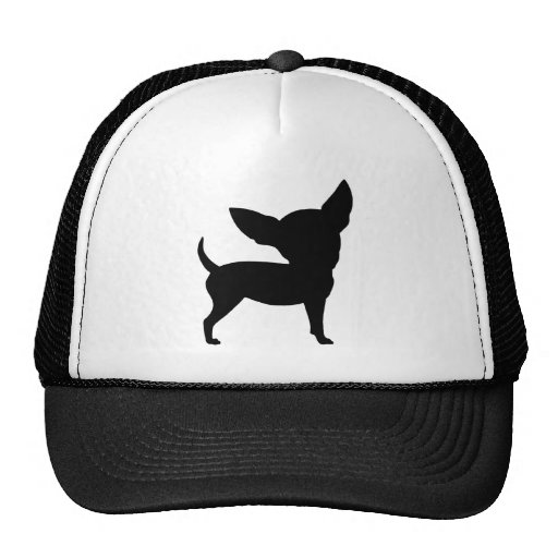 Funny Chihuahua Cap