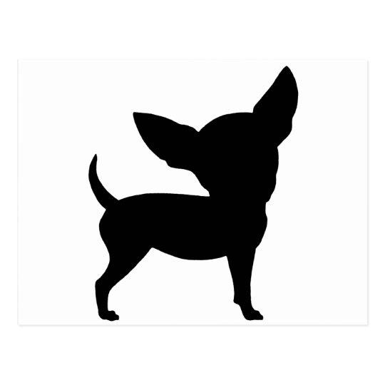 Funny Chihuahua Postcard