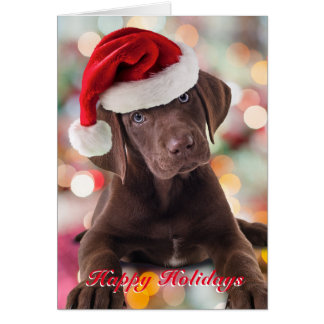 Funny Chocolate Lab Puppy with Santa Hat Card