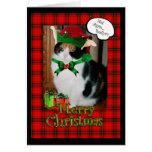 Funny Christmas card, grumpy cat