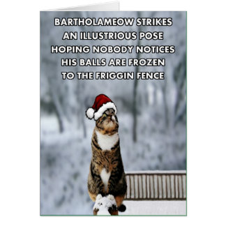 Funny christmas gifts t shirts art posters other gift ideas funny christmas cat card negle Gallery