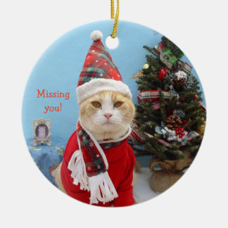 """Funny Christmas Cat """"Missing You!"""" Christmas Ornament"""