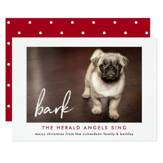 Funny Christmas Photo Card from the Dog |