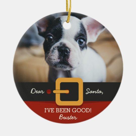 Funny Christmas Santa Dog Photo and Name Custom