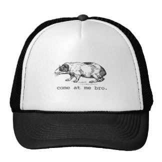 Funny Come At Me Bro Rodent T-shirt Cap