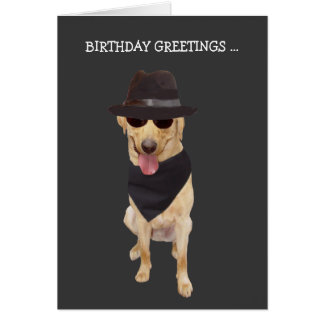 Funny Cool Dog/Lab from Group Greeting Card