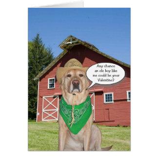 Funny Cowboy Dog/Lab Valentine Greeting Card
