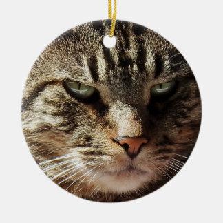 Funny Crabby Tabby Cat Christmas Ornament