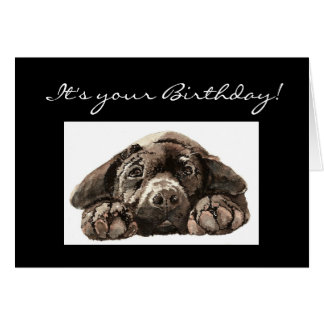 Funny  Custom Birthday, Labrador Retriever, Dog Card