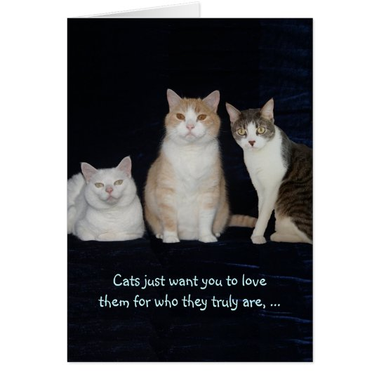 Funny Customisable Cats Card