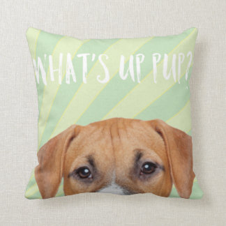 Funny Cute Boxer Dog With Rays of Sunshine Cushion