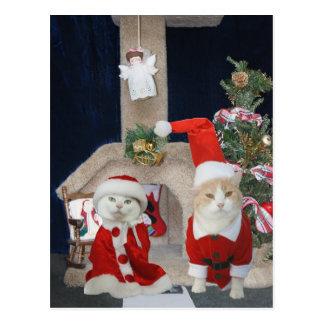 Funny/Cute Christmas Kitty Condo Postcard