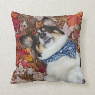 Funny, Cute, Corgi Look Cushion