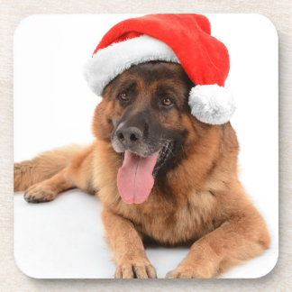 Funny Cute Dog In Christmas Hat Coaster