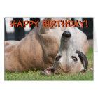 Funny cute greyhound greetings card