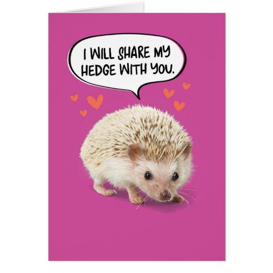 Funny Cute Hedgehog Birthday Card