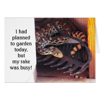 Funny Cute Herp Friendship - Sonoran Gopher Snake Greeting Card