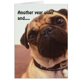 Funny Cute Humorous Pug Dog Birthday Card Card