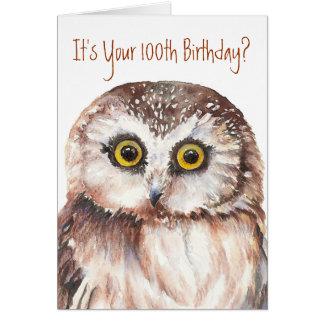 Funny-Cute Little Owl, 100th Birthday Card