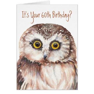 Funny-Cute Little Owl, 60th Birthday Card