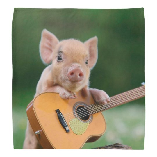 Funny Cute Pig Playing Guitar Bandana