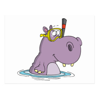 funny cute snorkeling swimming hippo postcard
