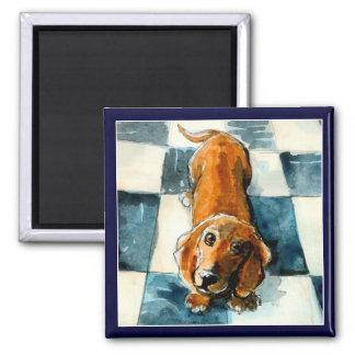 Funny Dachshund dog magnet
