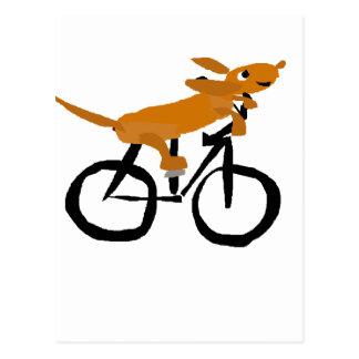 Funny Dachshund Riding Bicycle Postcard