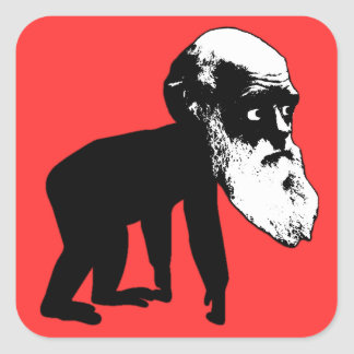 Funny Darwin evolution Square Sticker
