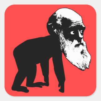 Funny Darwin evolution Square Sticker