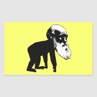Funny Darwin evolution Rectangular Stickers