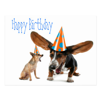 Funny Dog Birthday Postcard