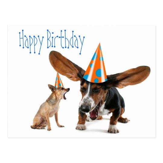 Funny Dog Birthday Postcard