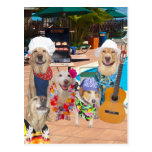 Funny Dog Customisable Pool Party Postcard