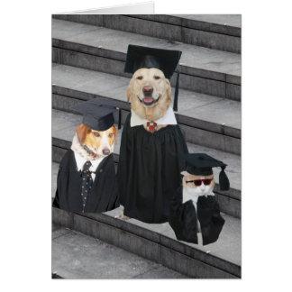 Funny Dog Graduation Greeting Card