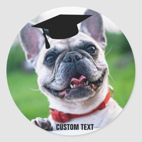 Funny Dog Graduation French Bulldog Photo Classic Round