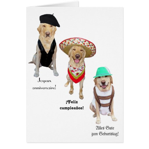 Funny Dog Happy Birthday in Four Languages Card