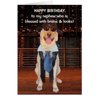 Funny Dog/Lab Birthday for Nephew Greeting Card