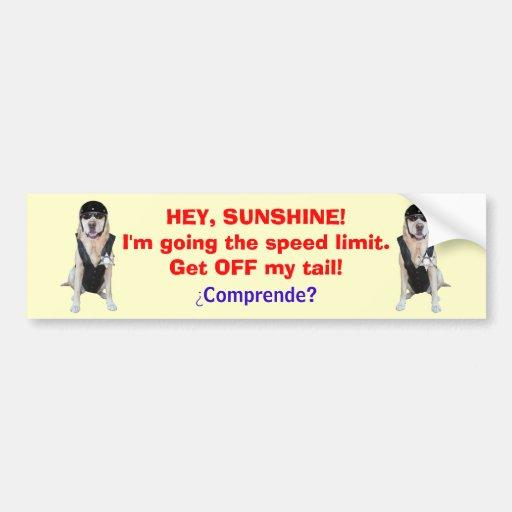 Funny Dog/Lab Bumper Sticker for tailgators