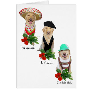 Funny Dog/Lab Love in Four Languages Valentine Greeting Card