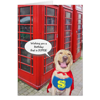 Funny Dog/Lab Super Birthday Greeting Card