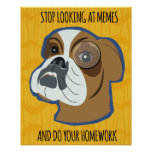 Funny Dog Meme Poster