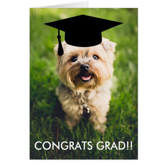 Funny Dog Photo Graduation Card, Custom Dog Photo