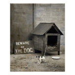 Funny Dog Poster