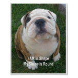 Funny Dog Poster Bulldog Pet Dogs Creationarts