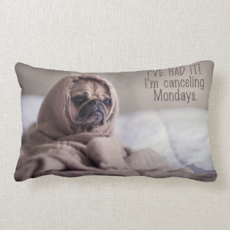Custom Funny Dog Throw Cushions Zazzle.co.uk